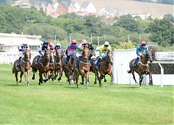 horseracing in Devon