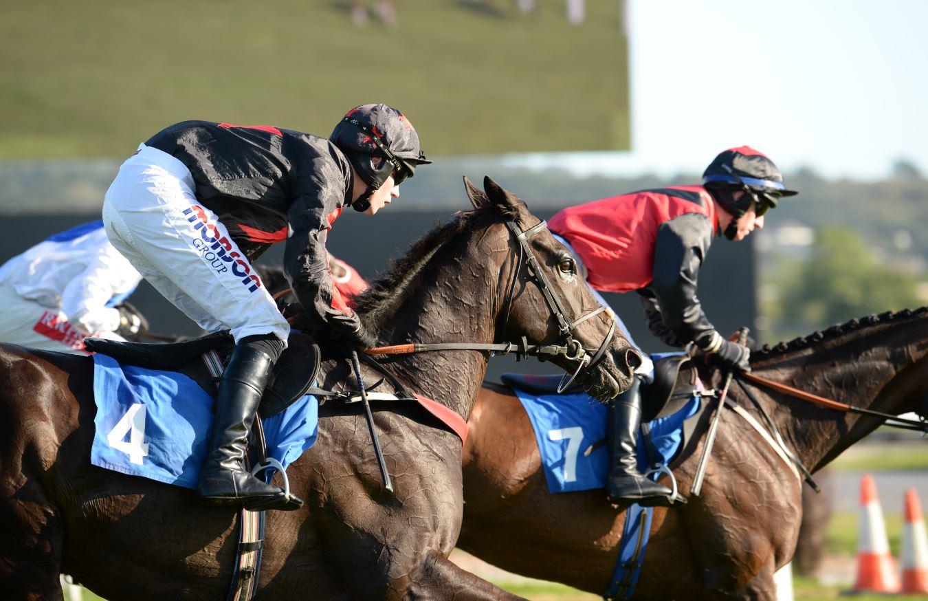 Horseracing in Newton Abbot