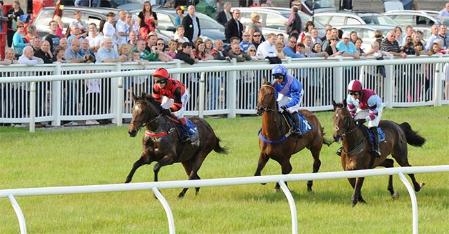 horseracing devon, horse racing devon, horse racing in devon, horse racing newton abbot